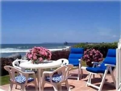 Sit on the Patio, Deck or Beach and Watch the Dolphins Frolicking in the Waves - Spectacular Ocean Front Property - San Diego - rentals