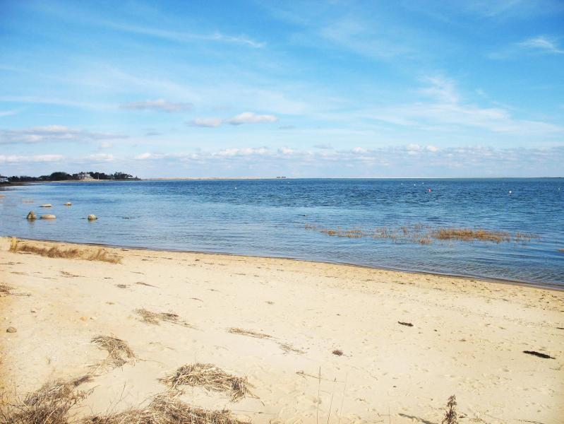 """Shore Acres"" Chatham Cape Cod Oceanfront & Beach. - Image 1 - Chatham - rentals"