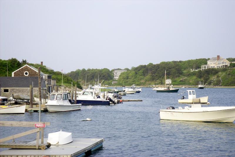 Chatham Ocean Harbor - Chatham*Fabulous Harbor House*OceanView,Best Beach - Chatham - rentals