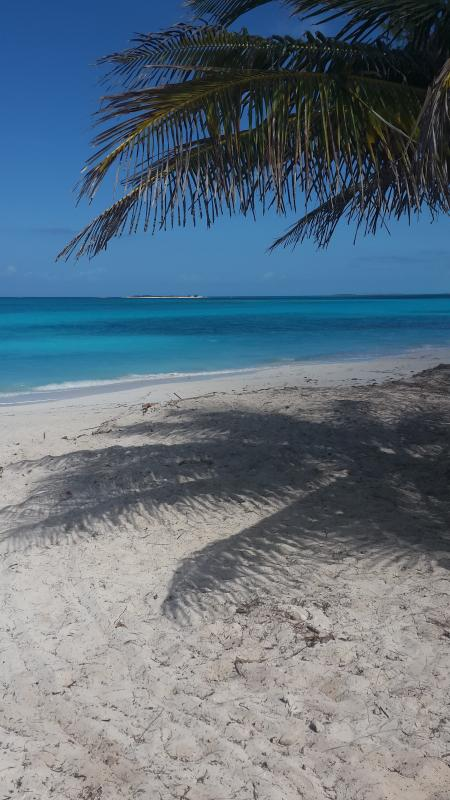 Three Sisters Beach - SEA GRAPE Beachfront  1750. wkly Free Car - Tar Bay - rentals