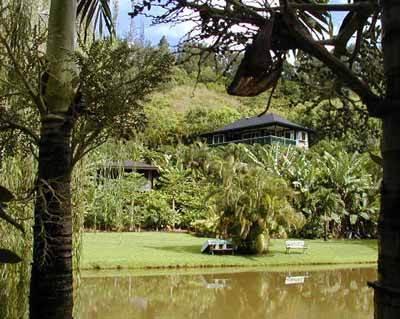 NOHONANI - Image 1 - Wainiha - rentals