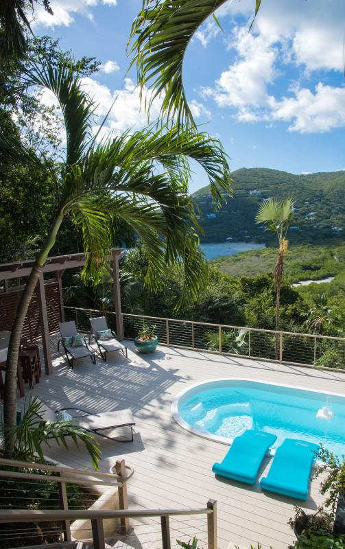 Casa Del Palmas: Perfectly Private on St. John! - Image 1 - Fish Bay - rentals