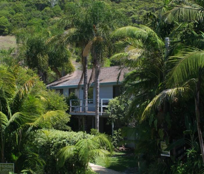 Palms House - Image 1 - Blueys Beach - rentals