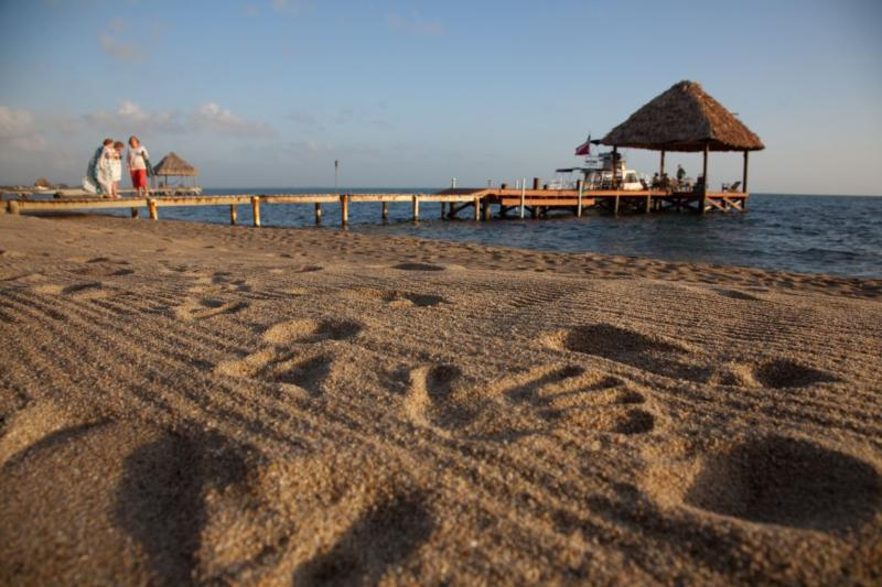 A beach less travelled - Beachfront Boutique Hotel with pool - Hopkins - rentals