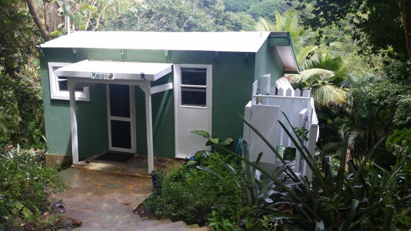 Mango cottage - Mango cottage - Christiansted - rentals