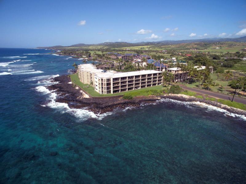 Our Pacific Paradise - Image 1 - Kauai - rentals