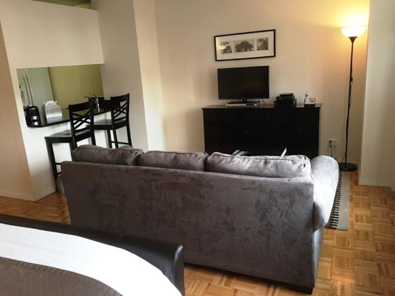 Fully Furnished Studio Apartment in East Side High Rise Building - Image 1 - New York City - rentals