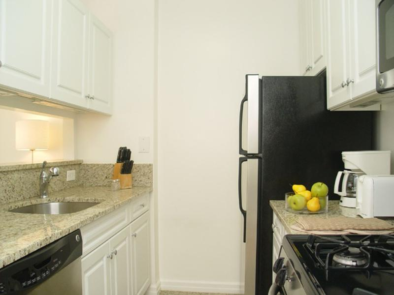 ELEGANT, SPACIOUS AND RELAXING 1 BEDROOM, 1 BATHROOM APARTMENT - Image 1 - New York City - rentals