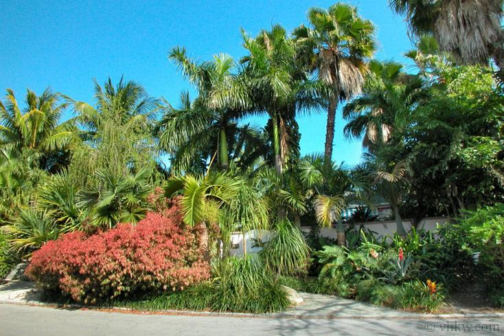 Mediterranean Caribbean Villa ~ Monthly Rental - Image 1 - Key West - rentals
