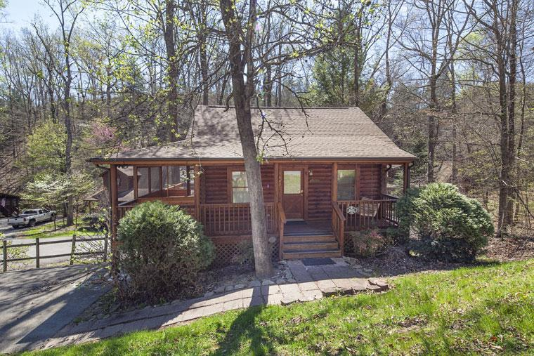 ER53 - BEARY SPECIAL - Image 1 - Pigeon Forge - rentals