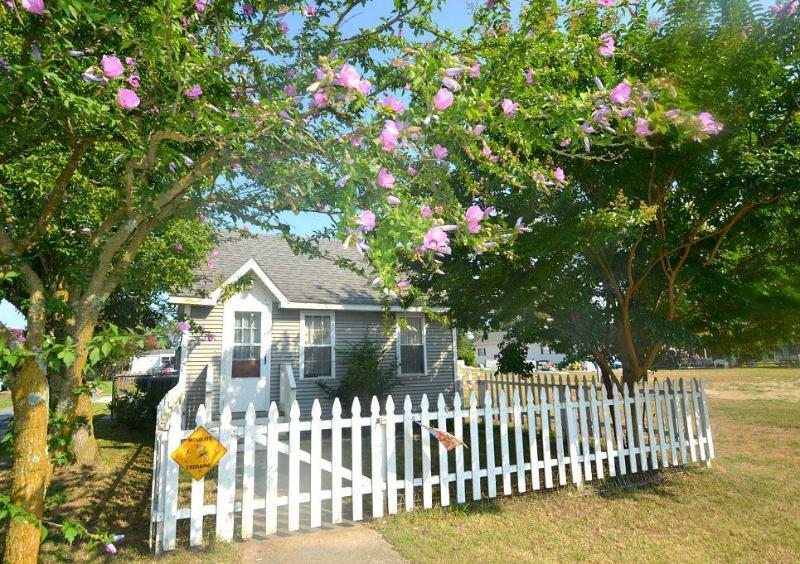 Daisey Cottage - Image 1 - Chincoteague Island - rentals
