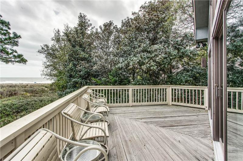 Duck Hawk 23 - Image 1 - Hilton Head - rentals