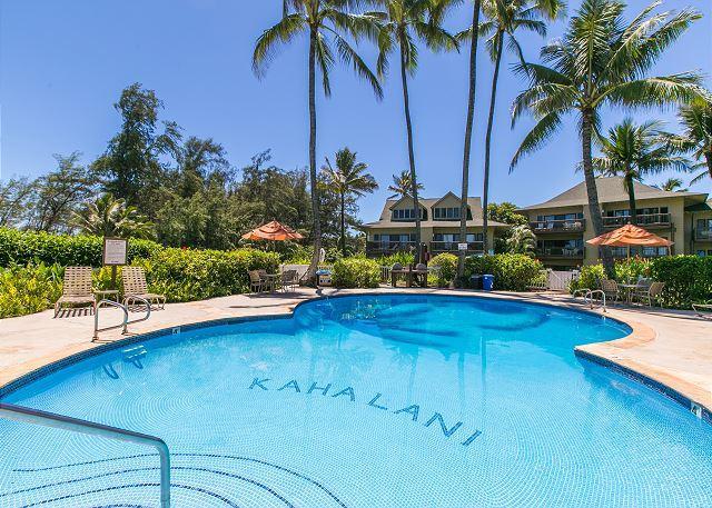 Kaha Lani #115, Ocean View, Ground Floor, Steps to Beach, 10% OFF SEP STAYS! - Image 1 - Lihue - rentals