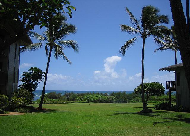 Kaha Lani #115, Ocean View, Ground Floor, Steps to Beach, Free Wifi & Parking - Image 1 - Lihue - rentals