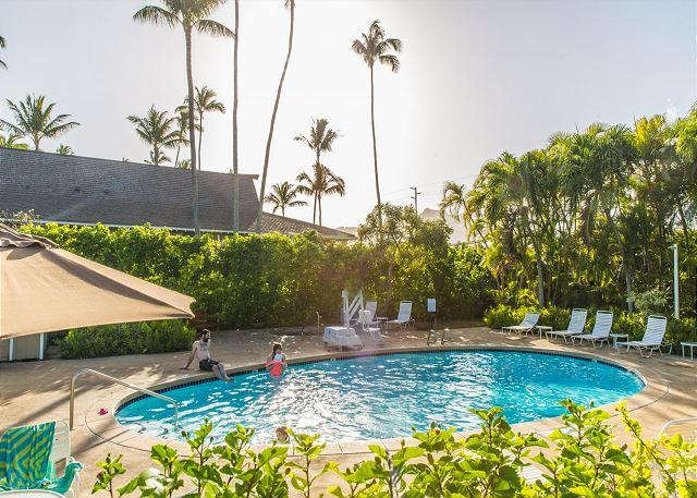 Plantation Hale D11, AC, Walk to shops & restaurants,$95/night SEP/OCT stays! - Image 1 - Kapaa - rentals