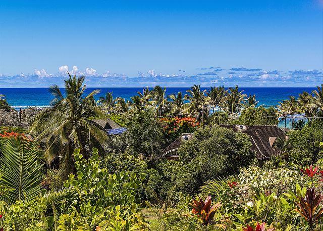 Ocean Views from the estate - Kauai Gardens Estate, Ocean Views, Walk to Beach, Private Suites, 4 Hot Tubs! - Anahola - rentals