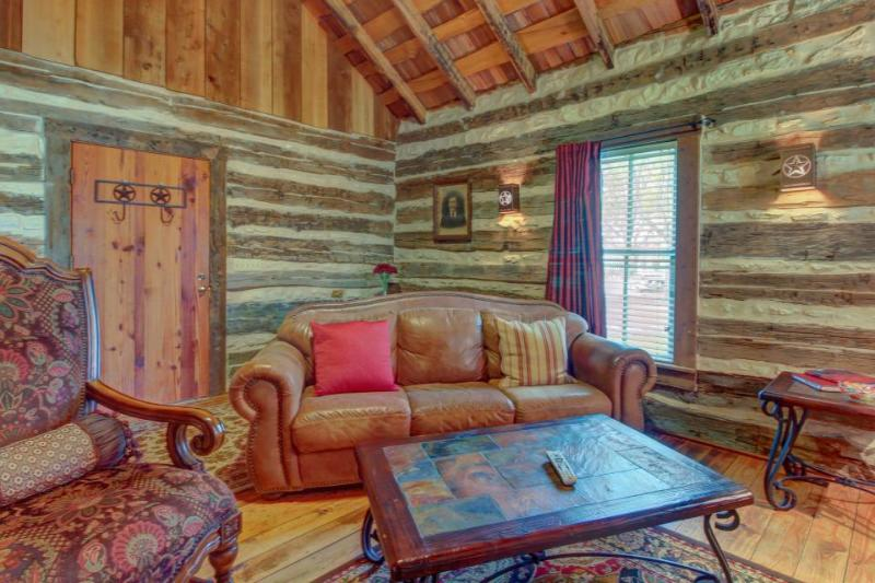 Lovely dog-friendly cabin w/ 4 on-site tasting rooms - along Hwy 290 Wine Trail! - Image 1 - Fredericksburg - rentals