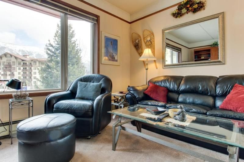 Alpine studio with shared, indoor hot tub plus deck w/ grill - Image 1 - Copper Mountain - rentals