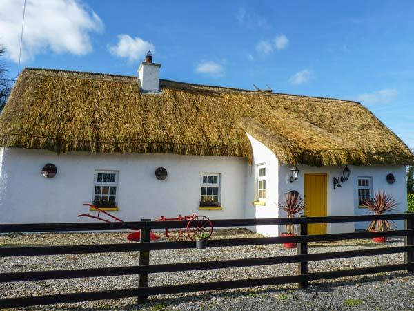 FITZPATRICKS COTTAGE, detached, thatched cottage, en-suite, solid fuel stove, dog-friendly, in Clough, Abbeyleix, Ref 929821 - Image 1 - Abbeyleix - rentals
