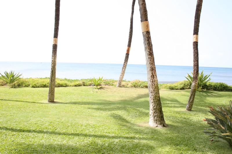 SUGAR BEACH RESORT, #130* - Image 1 - Kihei - rentals