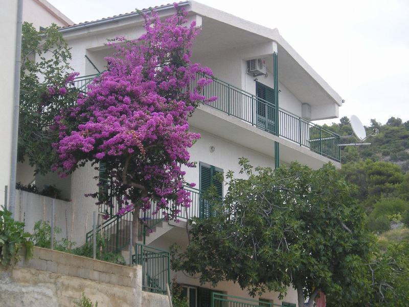 house - 4401  A1(6) - Primosten - Primosten - rentals