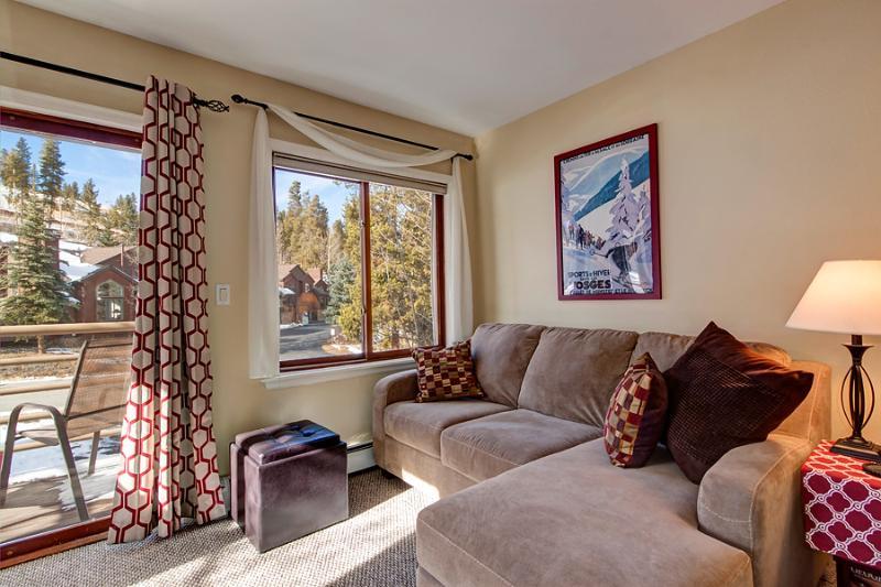 Affordably Priced  1 Bedroom  - *********** - Image 1 - Breckenridge - rentals