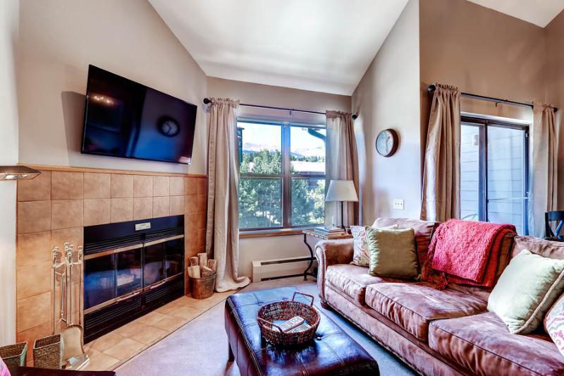 Adorable  1 Bedroom  - 1243-92913 - Image 1 - Breckenridge - rentals