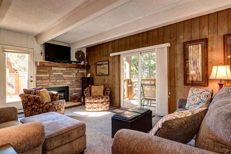 Reasonably Priced  2 Bedroom  - ********** - Image 1 - Breckenridge - rentals