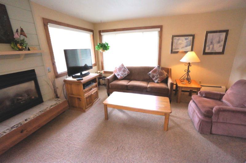 Economically Priced  1 Bedroom  - 1243-21369 - Image 1 - Breckenridge - rentals