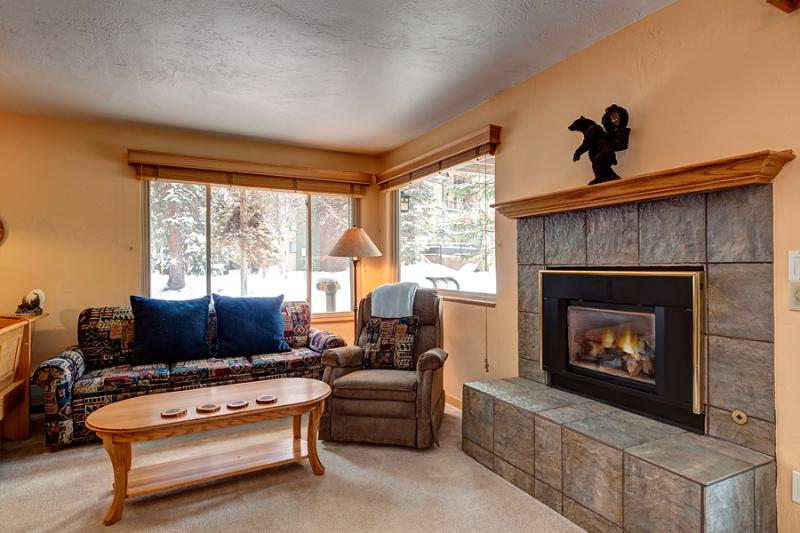 Wonderful  2 Bedroom  - 1243-104421 - Image 1 - Breckenridge - rentals