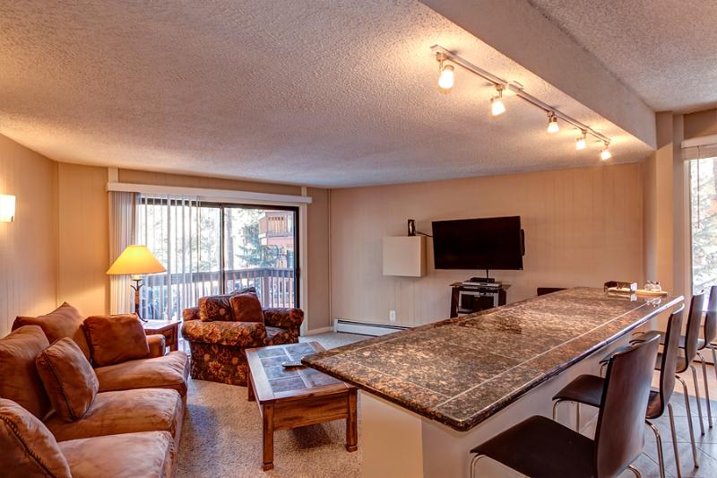Inviting  3 Bedroom  - 1243-21394 - Image 1 - Breckenridge - rentals