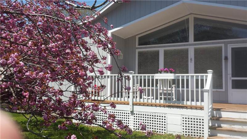 606 Juniper Court - Image 1 - Bethany Beach - rentals