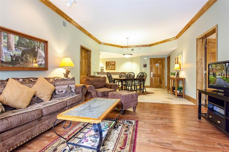 Baskins Creek 411 - Image 1 - Gatlinburg - rentals