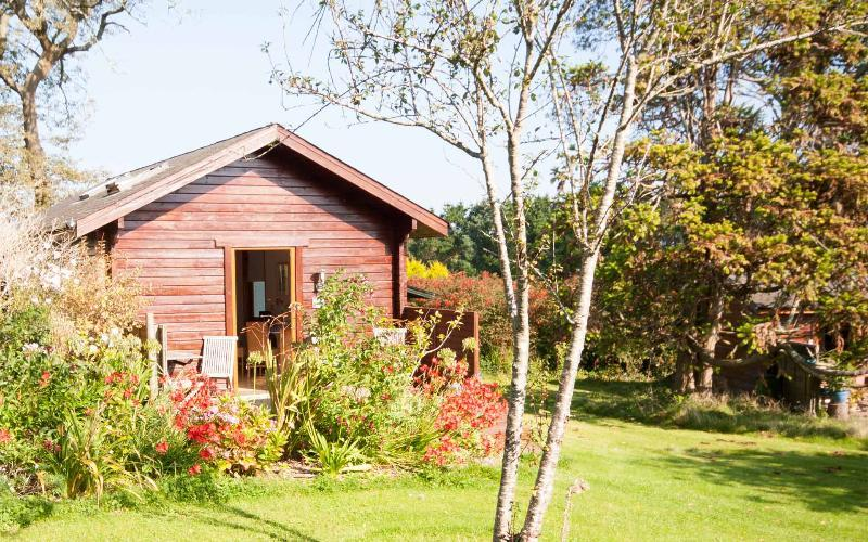 Cherry Tree Cabin - set in beautiful gardens - Milly and Martha - Cherry Tree Cabin - Saint Ives - rentals