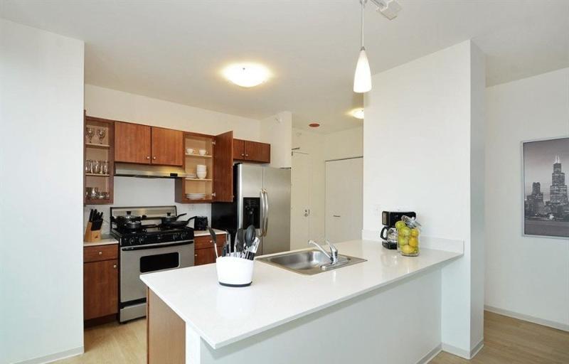 LOVELY FURNISHED 1 BEDROOM 1 BATHROOM  APARTMENT - Image 1 - Chicago - rentals