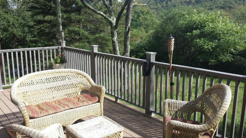 Belleayre Cozy Cabin - Image 1 - Fleischmanns - rentals