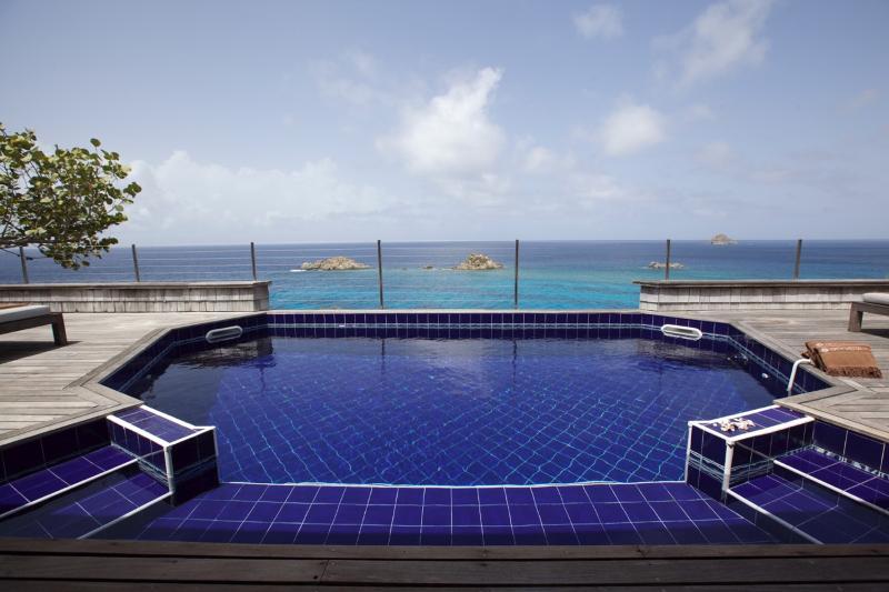 Villa Moore - Image 1 - Gustavia - rentals