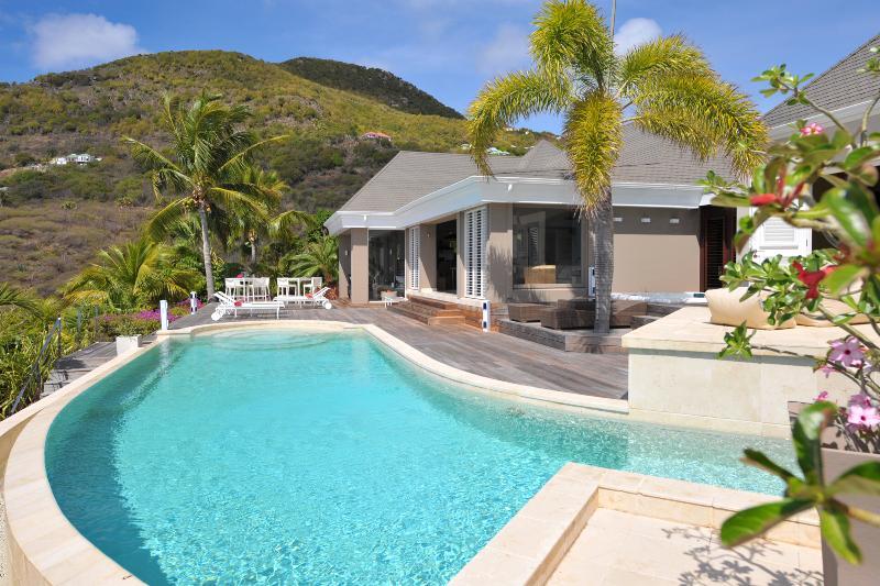 Villa Paulson - Image 1 - Toiny - rentals