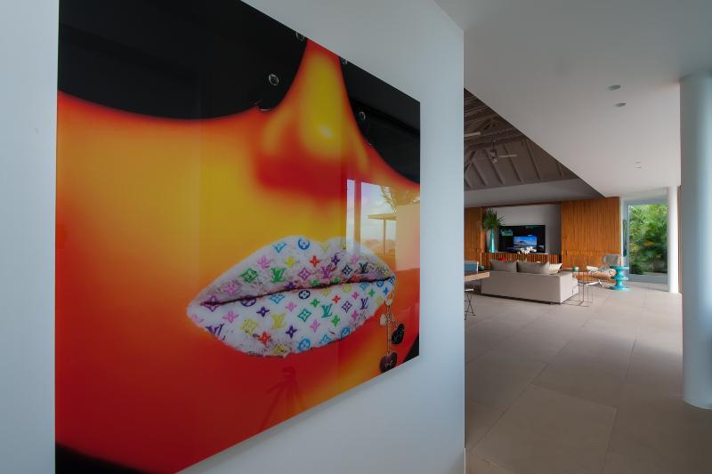 Villa Zuckerberg - Image 1 - Anse des Flamands - rentals
