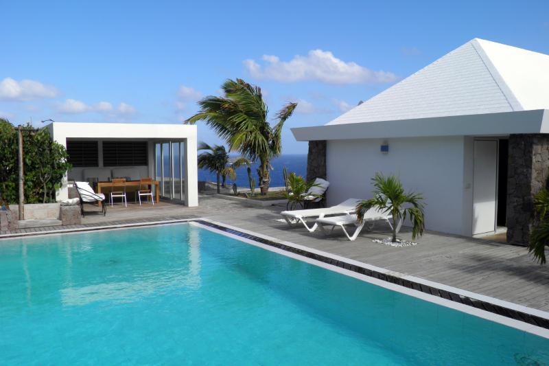 Villa Forrest - Image 1 - Pointe Milou - rentals