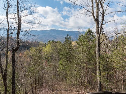 Mountain Charm - Image 1 - Gatlinburg - rentals
