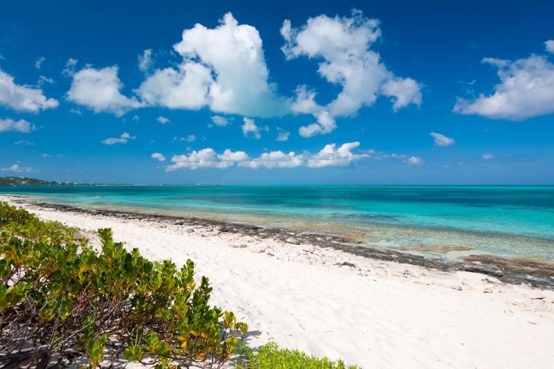 Beach Villa Sandstone - Image 1 - Providenciales - rentals