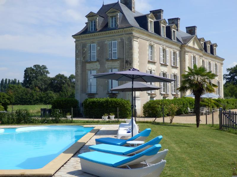 Chateau La Mothaye in the beautiful Loire Valley - B&B Chateau La Mothaye - Loire Valley - Brion - Brion - rentals