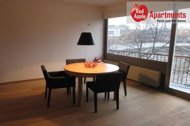 Very Pleasant Studio with Balcony and View on the Meuse! - 7258 - Image 1 - Liege - rentals