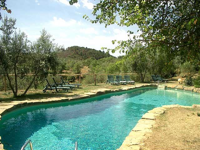 Relax and swim in the oasis shaped swimming pool - Romantic Hideaway W/ Pool & Tennis Court - Rapale - rentals