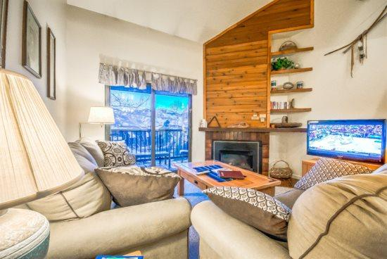 Timber Run 407 - Image 1 - Steamboat Springs - rentals