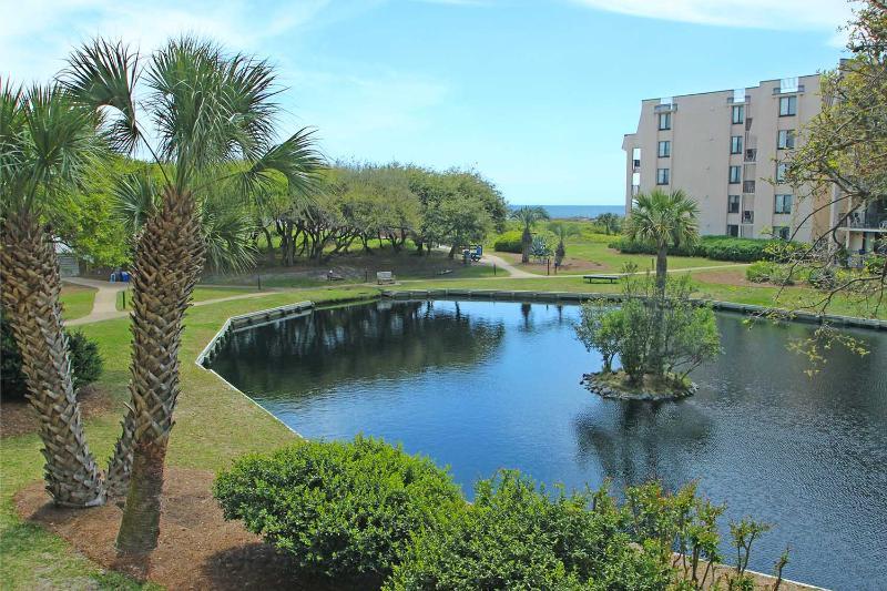 Island Club, 6204 - Image 1 - Hilton Head - rentals