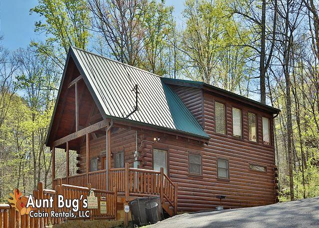 Cabin in between Gatlinburg and Pigeon Forge Above Expectations 294 - Image 1 - Sevierville - rentals
