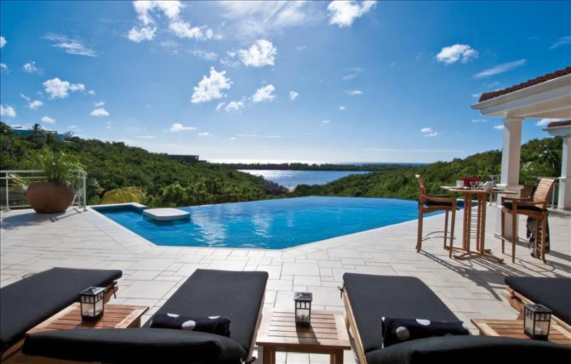 Beautiful Ocean view Villa with a large pool - Image 1 - Terres Basses - rentals