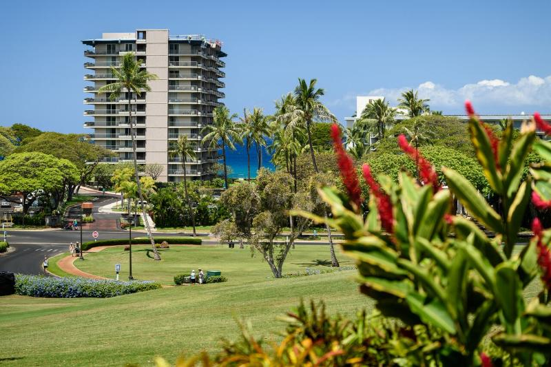 View - NEW LISTING!  2-bedroom Kaanapali Royal - Lahaina - rentals